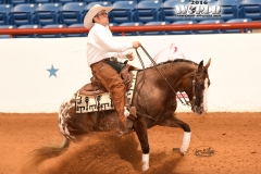 Regalo Del Cielo/M. Wade Smith _ Non-Pro Reining Champion