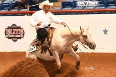 Tattooed By Daddy/Jorge Puente_Junior Reining Champion