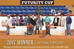 Daniel Schloemer, Champion L4 Open Futurity & ApRHA Buy, Breed, & Win Futurity