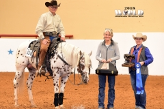 Harvey Stevens/Senior Reining Champion